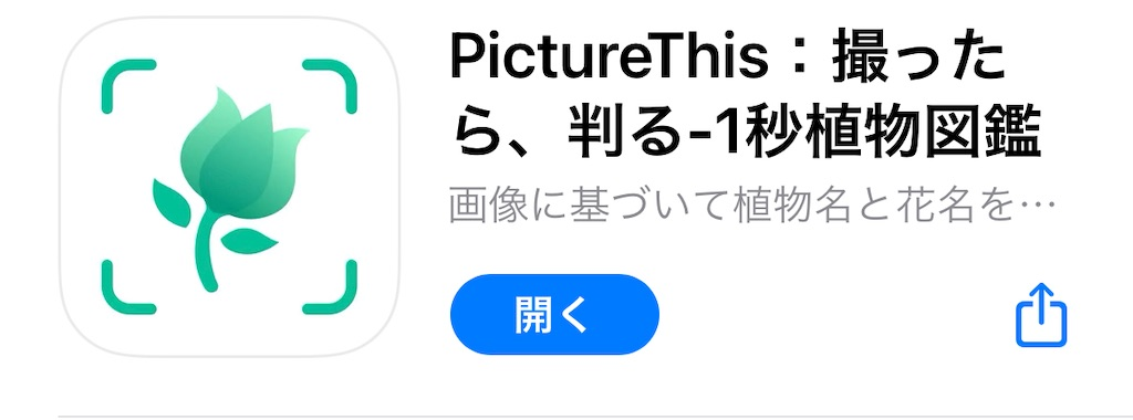 f:id:chankotochan:20210530062456j:image