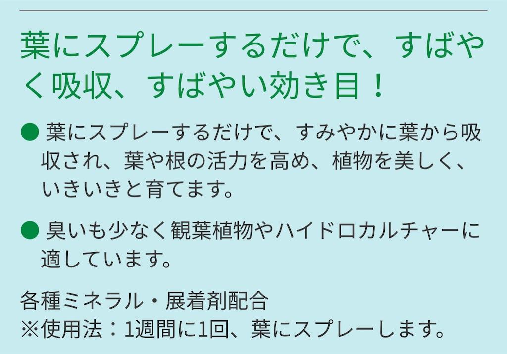 f:id:chankotochan:20210621083421j:image