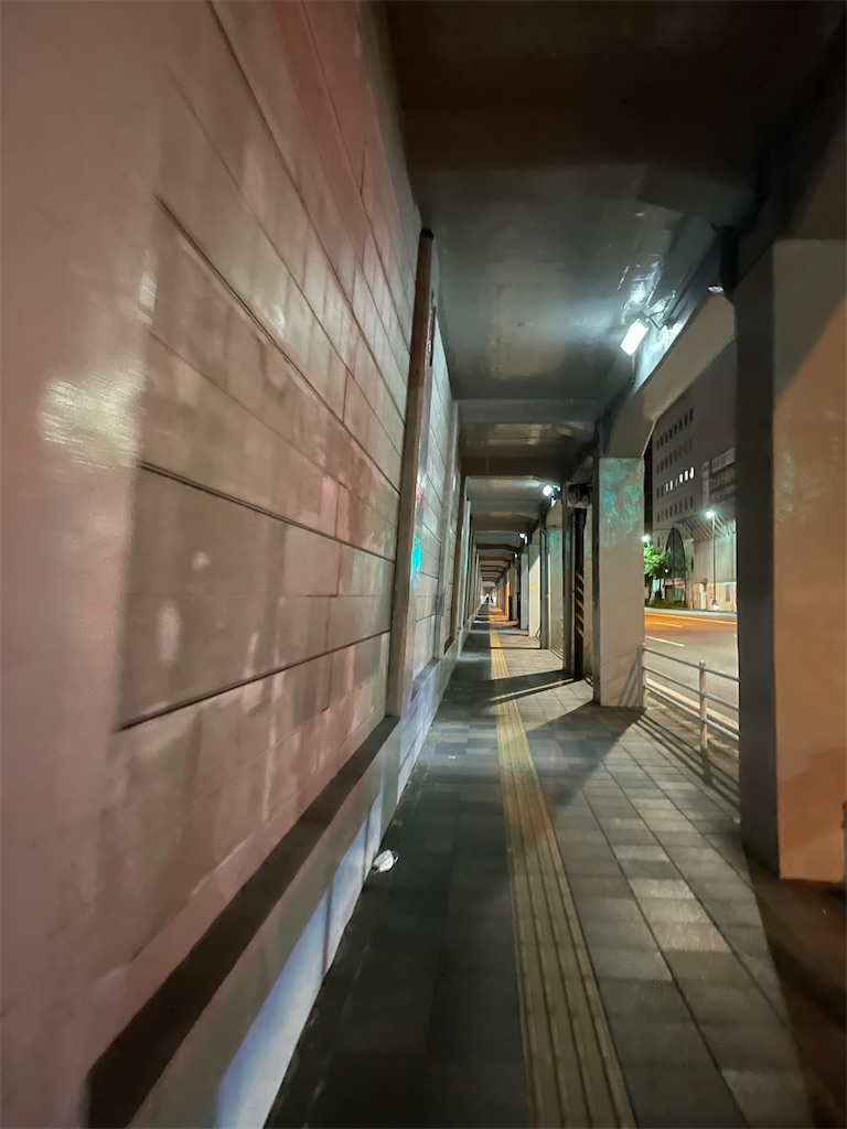 f:id:chankotochan:20210723155544j:image