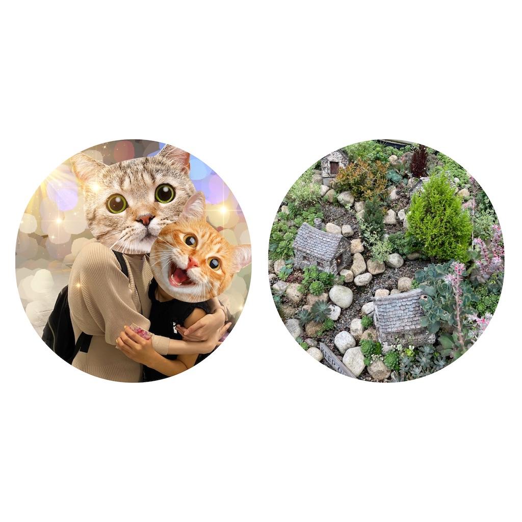 f:id:chankotochan:20210731020247j:image