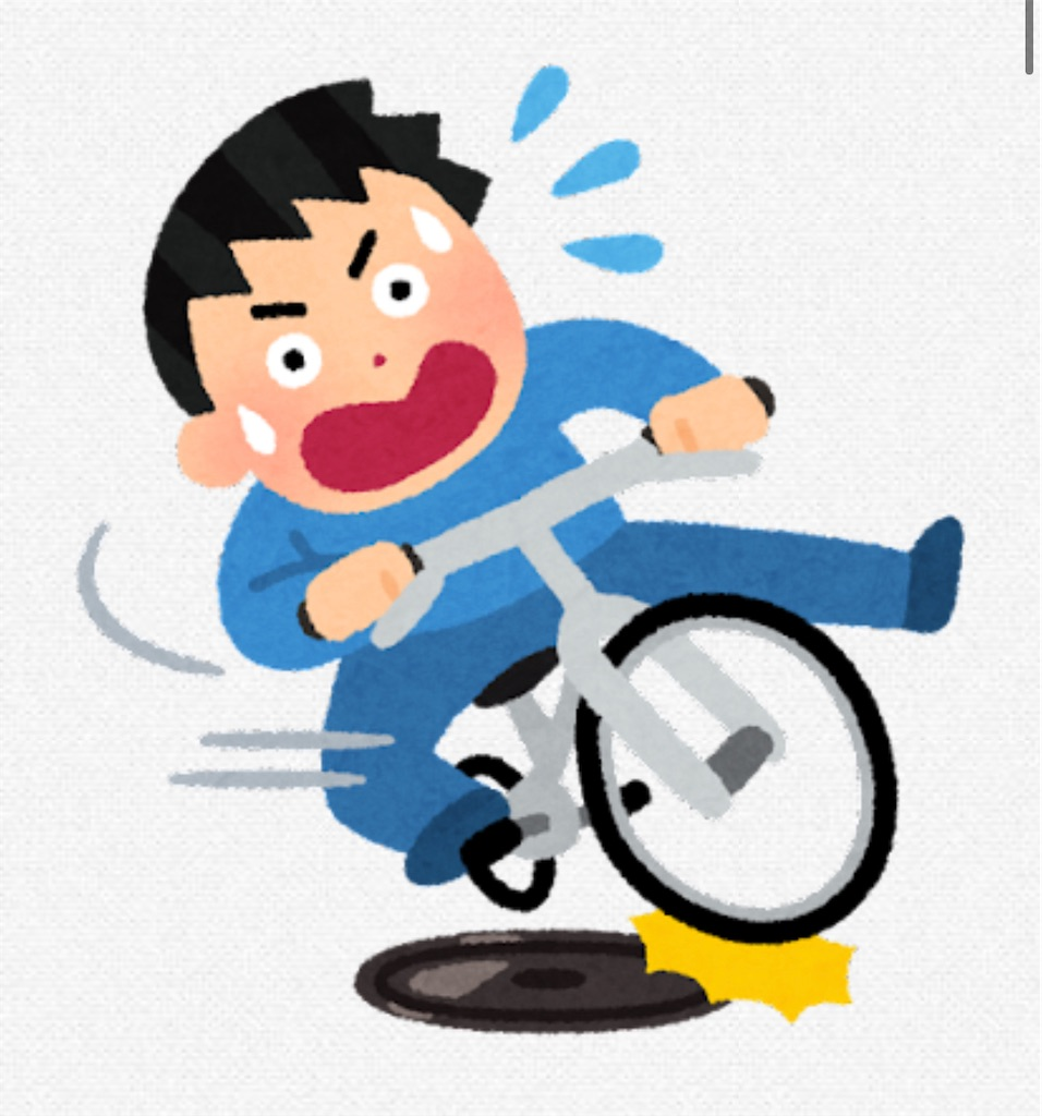 f:id:chankotochan:20210917081618j:image