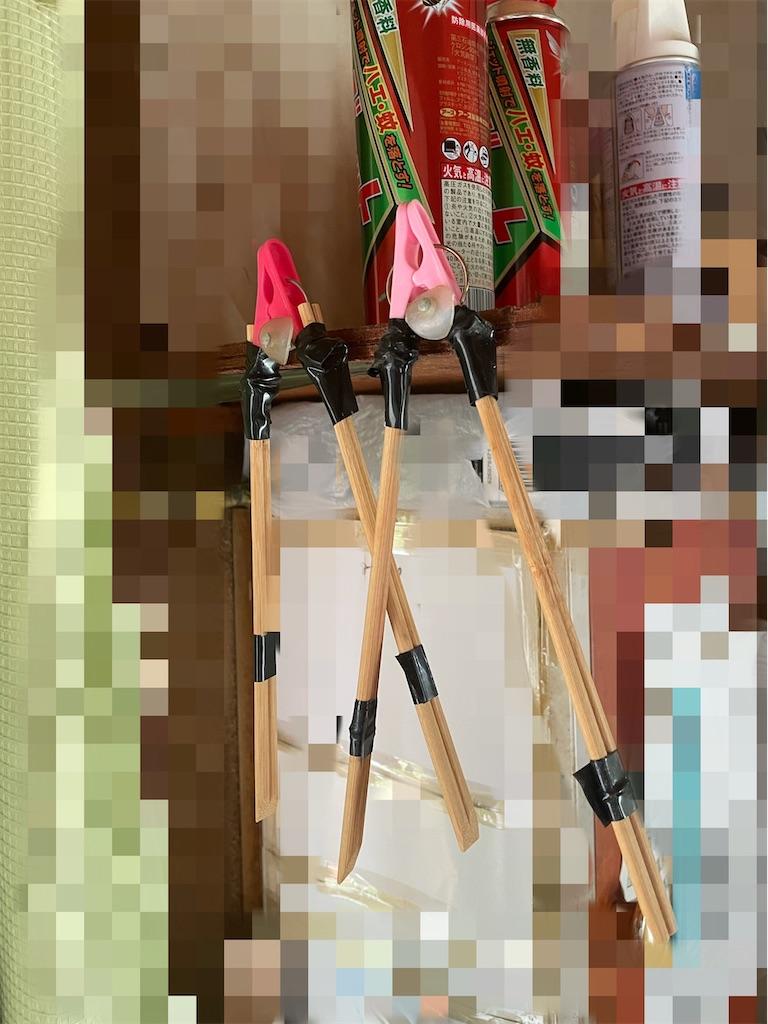 f:id:chankotochan:20210927084411j:image