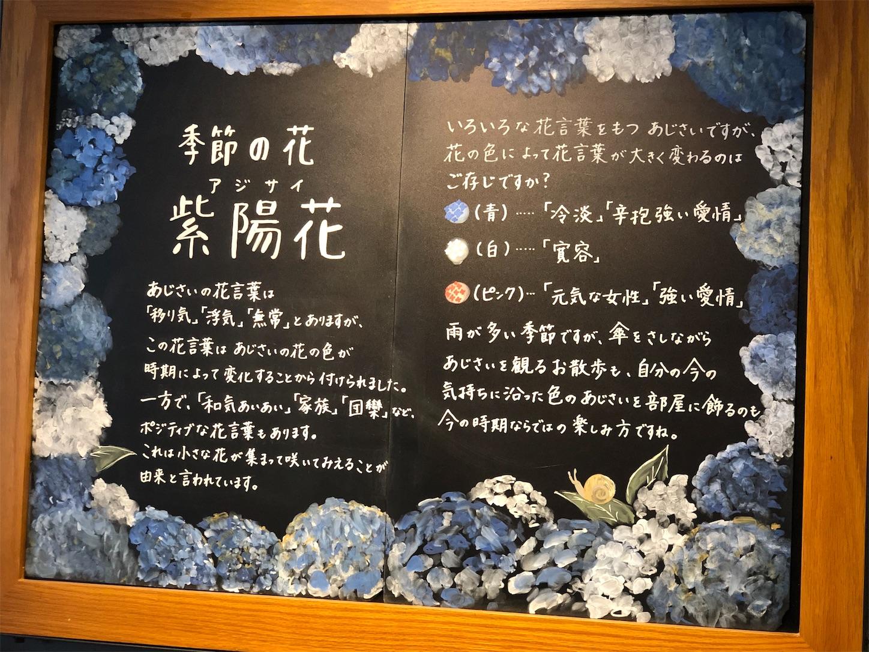 f:id:chanoyu:20190625093916j:image