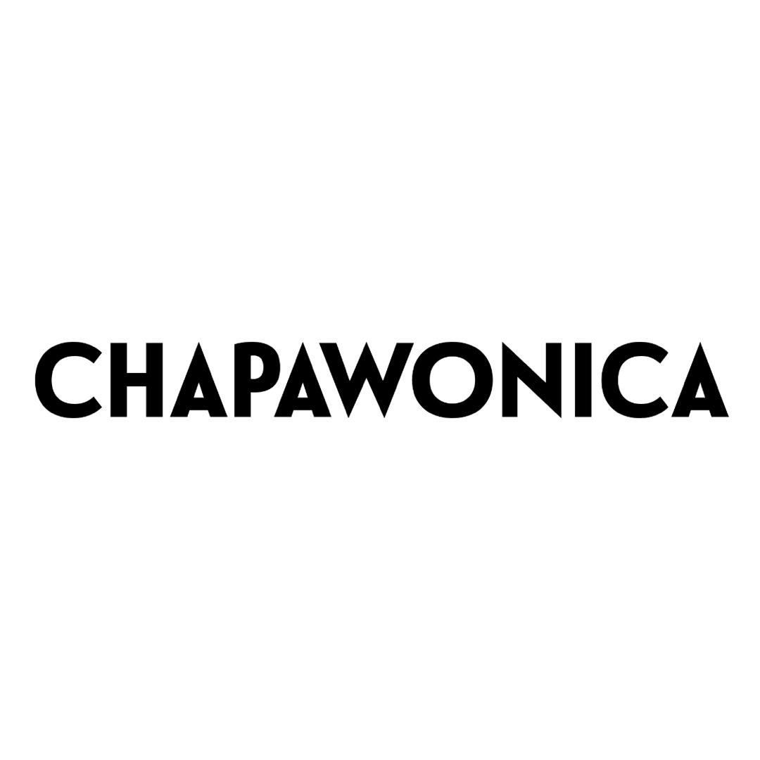 f:id:chapawonica:20190324234044j:plain