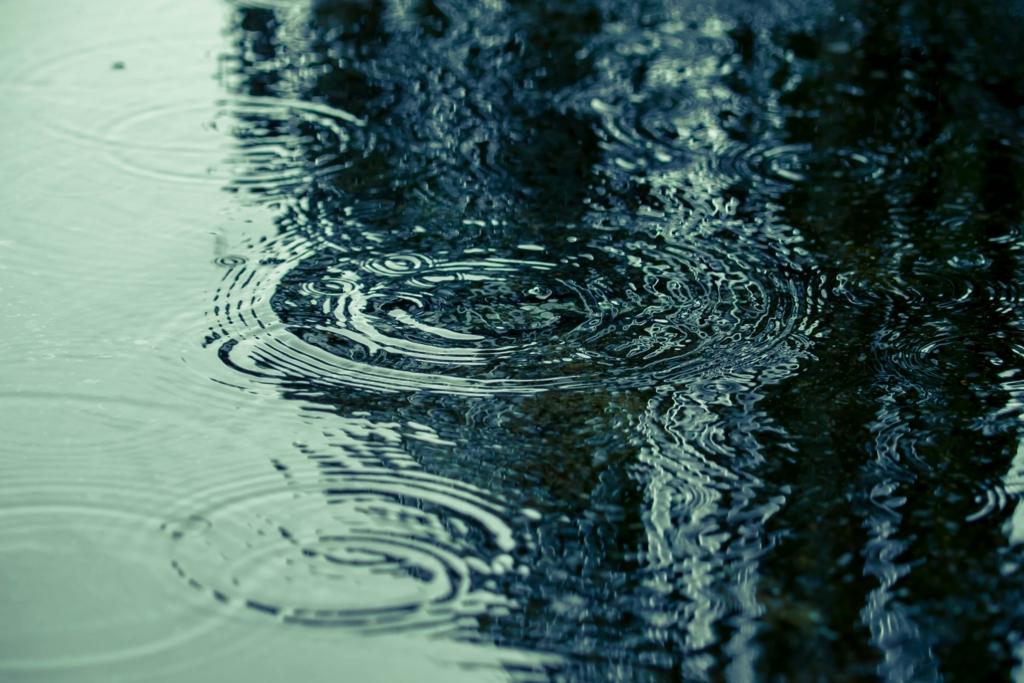 雨の日の地面