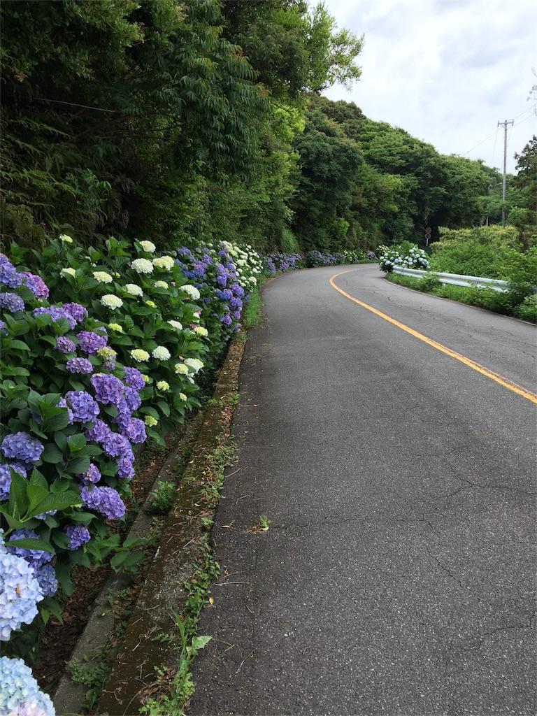 f:id:charinkooyaji:20170618202157j:image