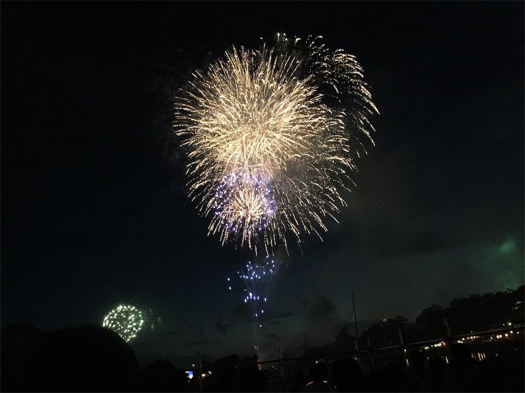 f:id:charinkooyaji:20170805224054j:image