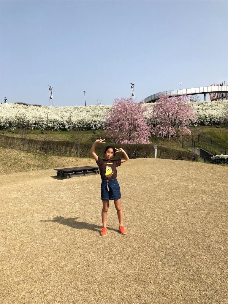 f:id:charinkooyaji:20180331080645j:image