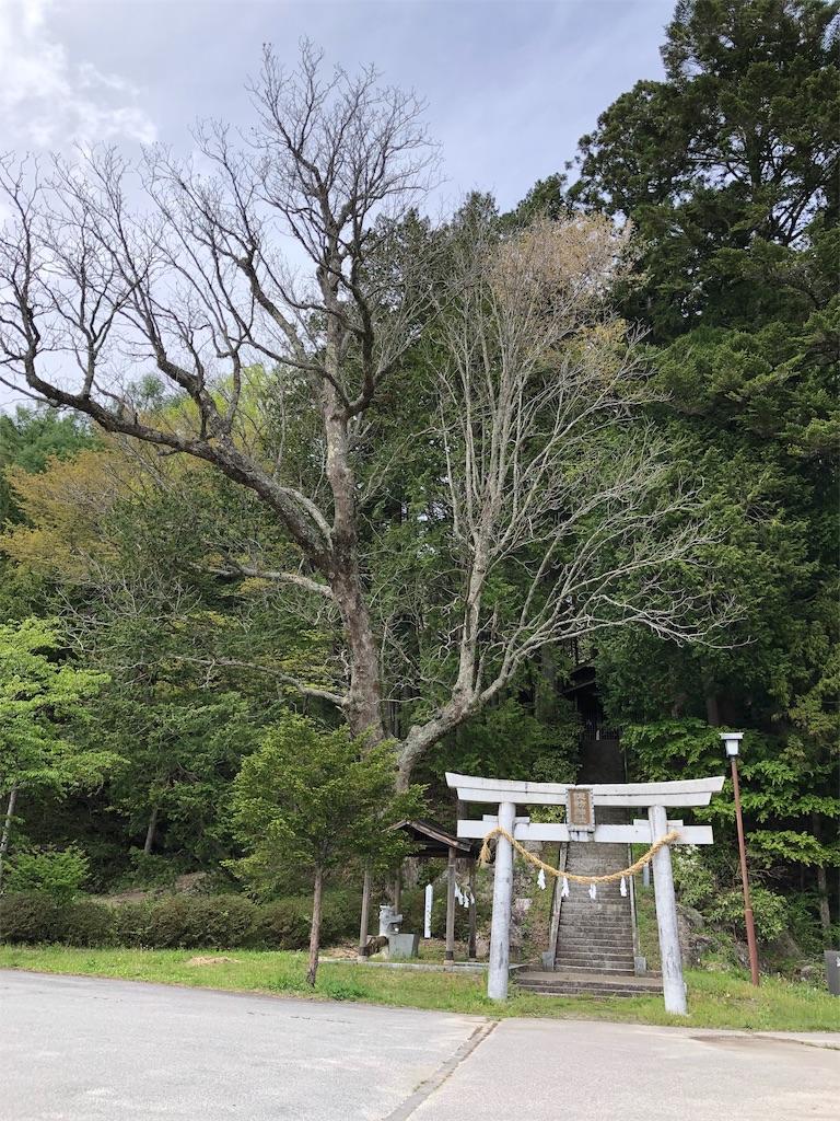 f:id:charinkooyaji:20190519123515j:image