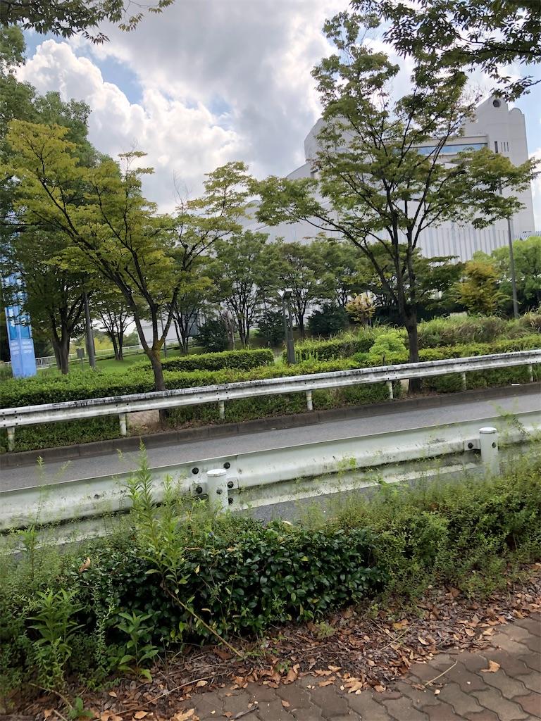 f:id:charinkooyaji:20201006080353j:image