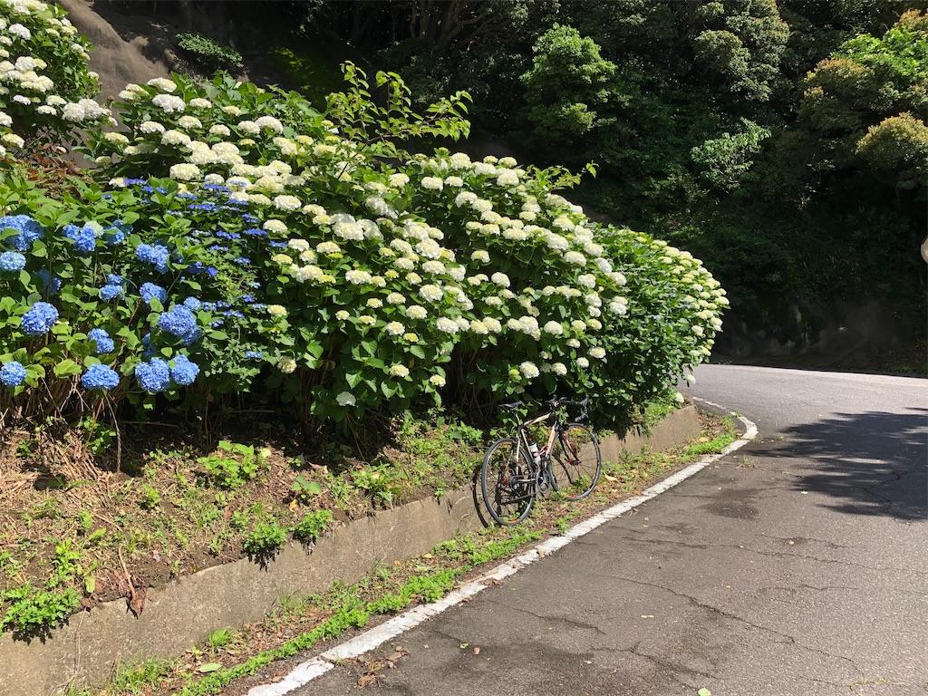 f:id:charinkooyaji:20210606164949j:image