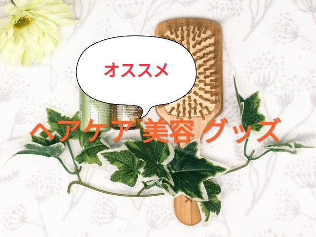 f:id:charm_h:20210130164401j:plain