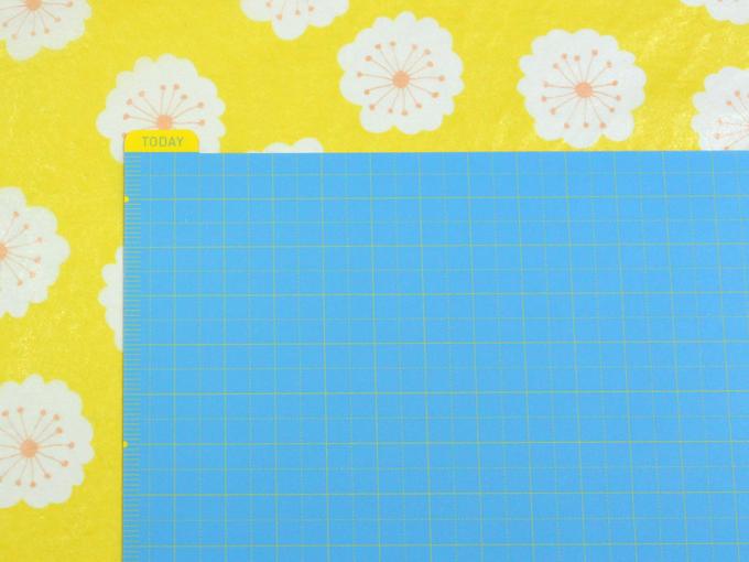 ほぼ日の下敷き カズン用 (水色×黄色) [ ほぼ日 ]
