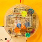 500円玉型のケースが可愛い、お金持ちあそび [ 大倉トーイ ]