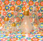 小さいものから大きいものまで電球瓶集めました。