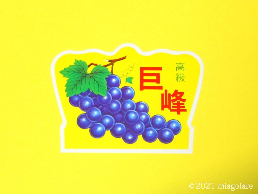 フルーツラベル 果物ラベル 巨峰