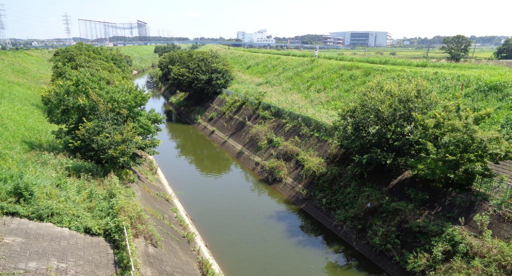 利根運河 河口付近