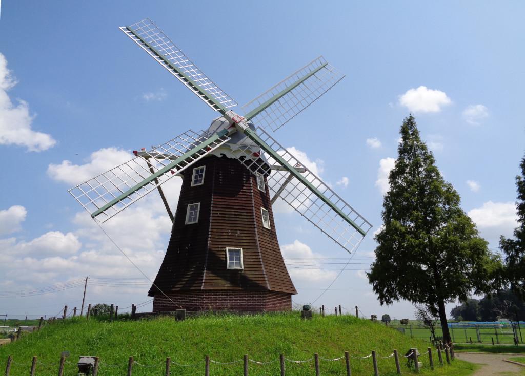 風車 オランダ風車 あけぼの公園 シンボル 睡蓮 チューリップ ひまわり