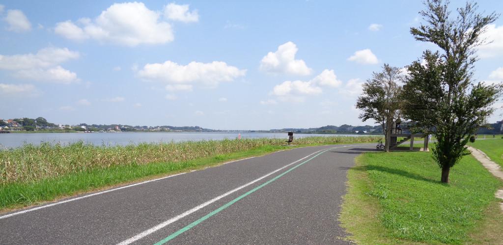 と公園2 手賀沼 サイクリング サイクリングロード