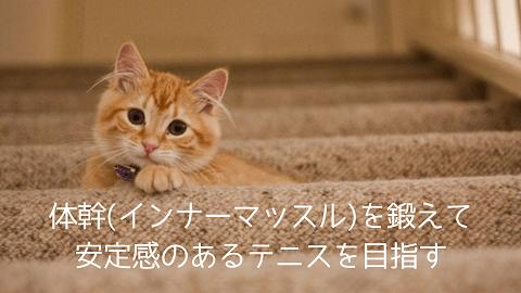 f:id:chatoracat:20181020195437p:plain