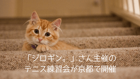 f:id:chatoracat:20181020200615p:plain