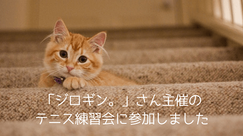 f:id:chatoracat:20181020200943p:plain