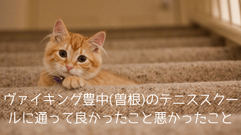 f:id:chatoracat:20181020231603p:plain