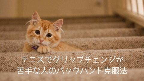 f:id:chatoracat:20181021001504p:plain