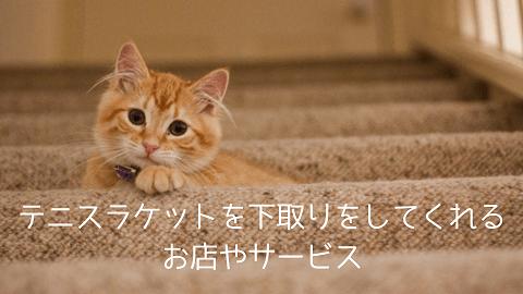 f:id:chatoracat:20181021002335p:plain