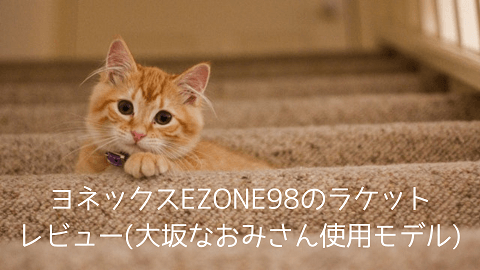 f:id:chatoracat:20181021003802p:plain