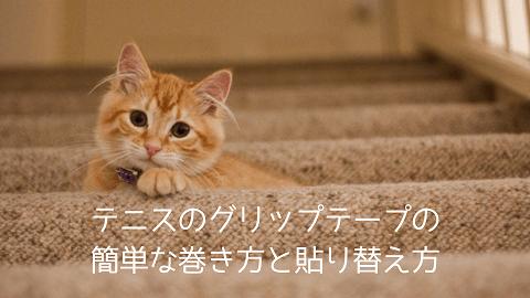 f:id:chatoracat:20181021004352p:plain