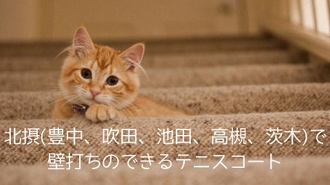 f:id:chatoracat:20181021182904p:plain