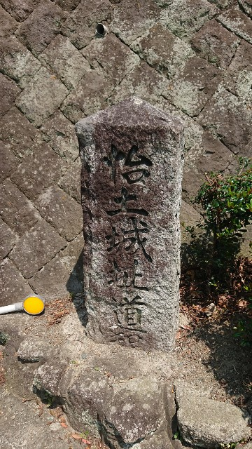 f:id:chayarokurokuro:20200602235507j:plain