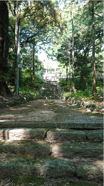 f:id:chayarokurokuro:20200603002504j:plain