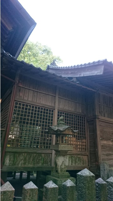 f:id:chayarokurokuro:20200604004954j:plain