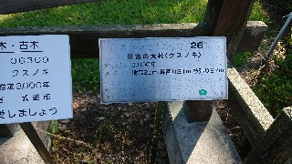 f:id:chayarokurokuro:20200623222205j:plain