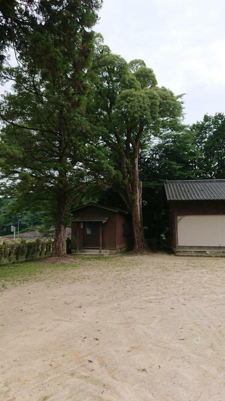 f:id:chayarokurokuro:20201206121710j:plain