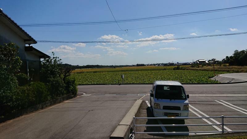 f:id:chayarokurokuro:20201208224455j:plain
