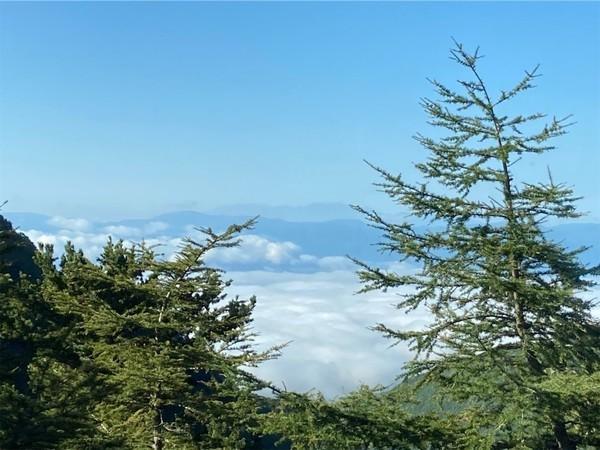 高峰温泉 雲海