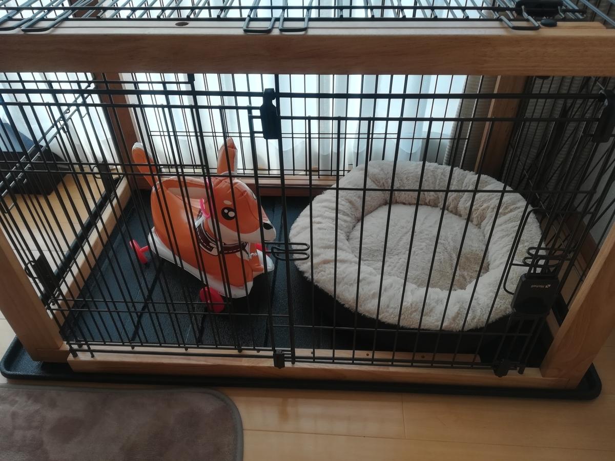 犬,ケージ,スライド