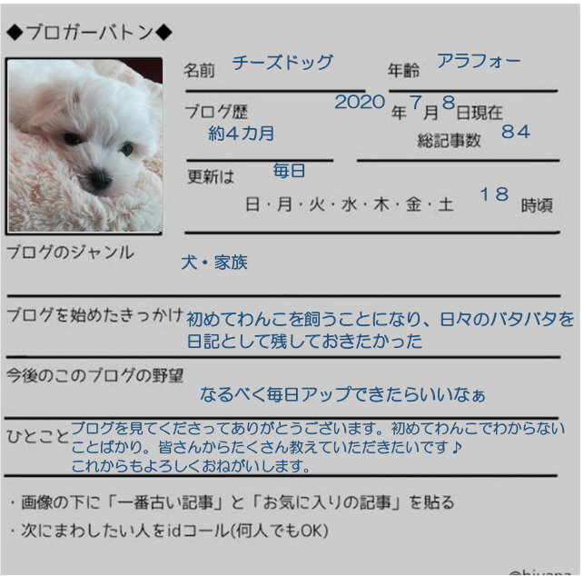f:id:cheesedogstar:20200708120415p:plain