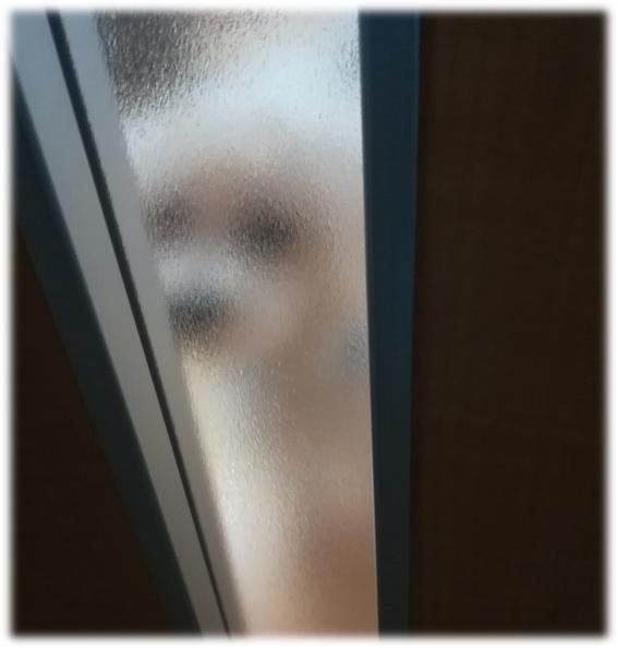 マルチーズ,ドア,こっそり
