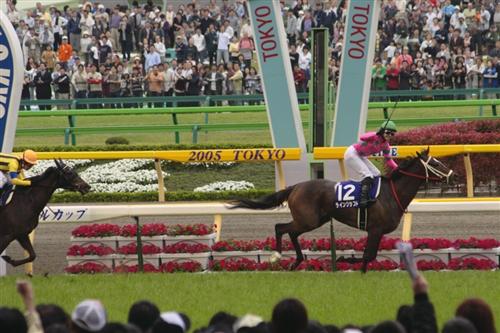 ラインクラフト_NHK