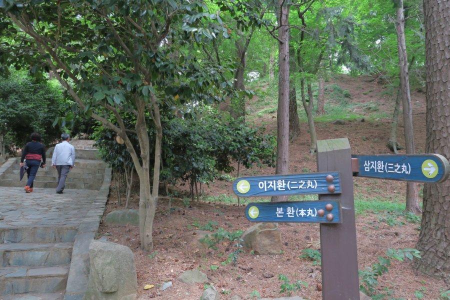 f:id:cheonghongsa:20170520224008j:plain