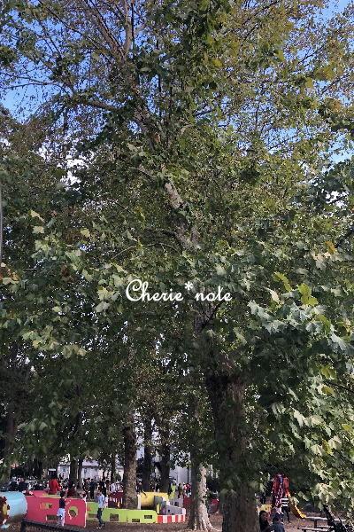 f:id:cherie-b:20191027183439j:plain