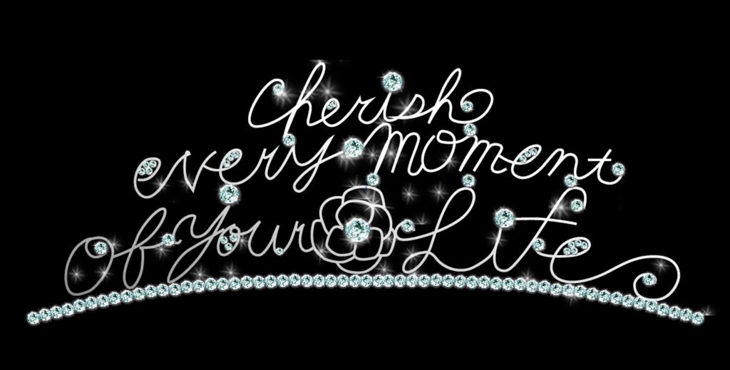 f:id:cherish-the-moment:20180207153012p:plain