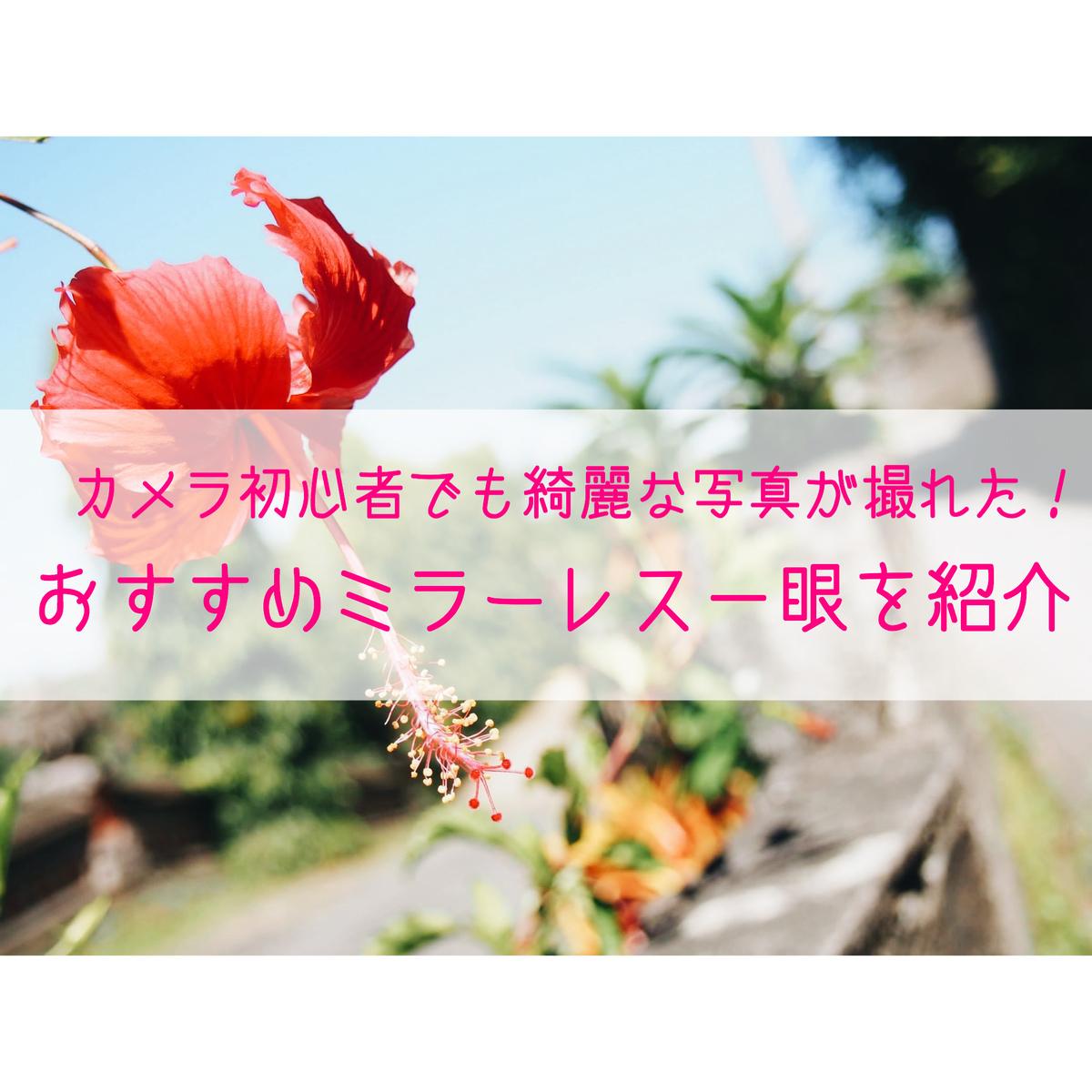 f:id:cherrycherry3504:20200731111827j:plain
