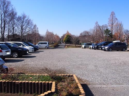 f:id:cherrypie-saitama:20190310215009j:plain