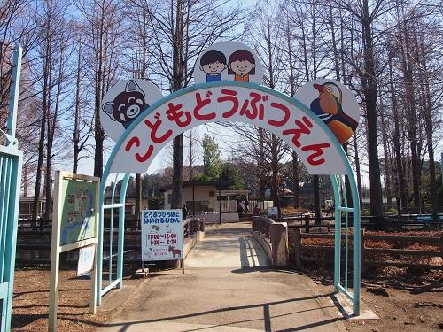 f:id:cherrypie-saitama:20190313135904j:plain
