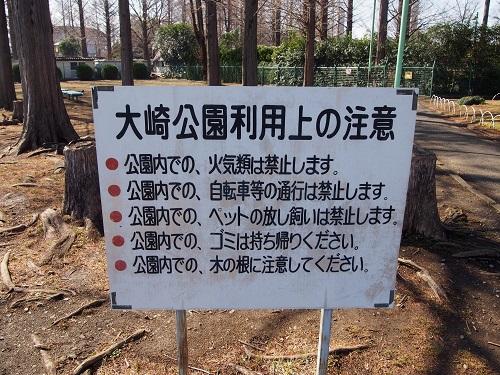 f:id:cherrypie-saitama:20190313135927j:plain